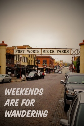 Weekends are for Wandering: Fort Worth Stockyards